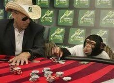 http://apolojetics.wordpress.com/2013/08/11/infinite-monkeys-and-a-gamblers-chance/