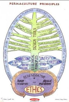 PERMACULTURE IS SO AWESOME!