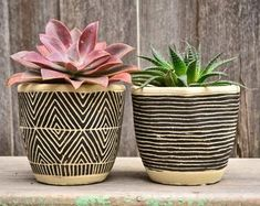 Plant pots   Etsy AU