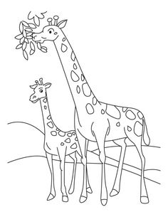 Giraffe And Calf Coloring