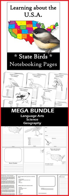 Cross-curricular learning at it's best. 700+ pages in this MEGA BUNDLE - Language Arts, Science and Geography  * Notebooking project *