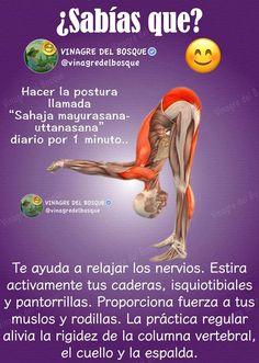 Kundalini Yoga, Yoga Meditation, Yoga Flow, Yoga Fitness, Health Fitness, Health Education, Physical Education, Chocolate Slim, Yoga Anatomy
