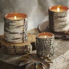 Birch bark filled candle $9.99