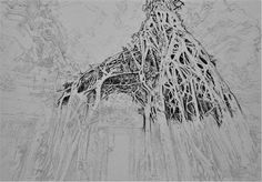 Acoustic Drawings The Shinji Ogata Gallery: Ta Prohm, Cambodia 4 タ・プローム(カンボジア) 4
