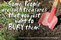 I am counting all my 'treasures' today...
