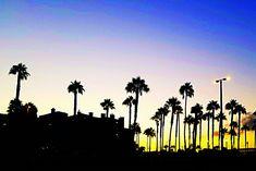 Huntington Beach, Parking Lot, Seattle Skyline, Surfing, Sunset, Travel, Outdoor, Outdoors, Viajes