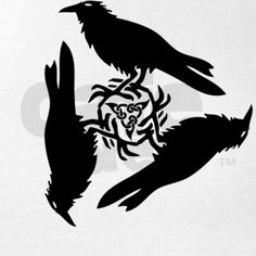 More ravens