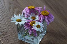 Fotka trochu mate, ty kopretiny jsou růžové (Robinson pink) a k nim pár bílých z louky. Krásná dekorace na stůl.