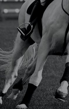 The person's heels are down. Good.  But their feet aren't parallel to the horse's body.  Fix it please.