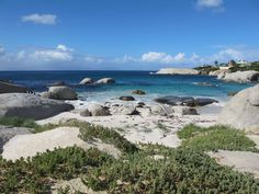 The Cape Peninsula loop is one of the most spectacular drives in the world and it's a great day road trip from Cape Town. Boulder Beach, African Penguin, Day Trip, Cape Town, Bouldering, Scenery, World, Penguins, Paisajes