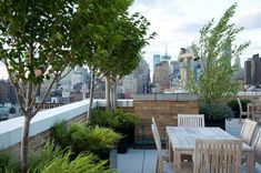 Roof terrace. Trees & low maintenance grasses for privacy