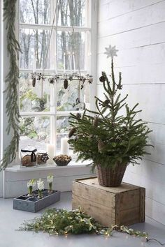 Tiny front porch outdoors christmas tree ; Gardenista