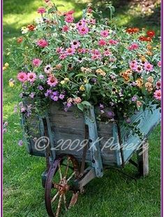 zinnias in a garden cart. My dad would plant zinnias in the middle of his vegetable garden. Zinnias will always hold a special place in my heart. Garden Cart, Diy Garden, Dream Garden, Garden Bed, Garden Ideas, Garden Pots, Wheelbarrow Planter, Barrel Planter, Deco Floral