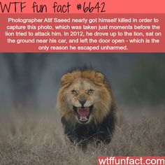 Atif Saeed photography - WTF fun facts