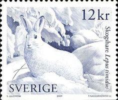 こちらは同じシリーズの雪ウサギ。フワフワした感触が伝わってきそうな感じがいいですね。