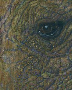 Realistic Elephant Eye Illustration - Wild Animal, African Safari 8x10 Art Print by bettinastreehouse, $20.00