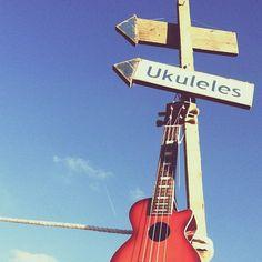 """@milkandbiscuits's photo: """"#westmountmusic @ #wildernessfestival"""" s"""