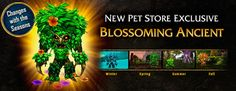 New Blizzard Store pet, the Blossoming Ancient, changes with the seasons