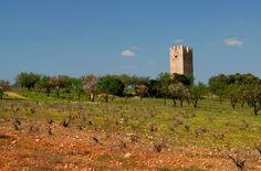 Vravrona tower