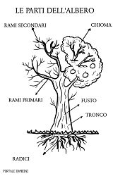 LE PARTI DELL'ALBERO Teaching Science, Botany, Problem Solving, Zine, Coding, Activities, Education, Montessori, Geography