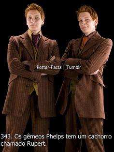 Always. (Posts com o marcador Curiosidades) Harry Potter Disney, Harry Potter Tumblr, Memes Do Harry Potter, Harry Potter Imagines, Mundo Harry Potter, Slytherin Harry Potter, Harry Potter Spells, Harry Potter Love, Harry Potter Universal