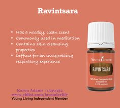Ravintsara Essential Oil is an exotic oil with an aroma & properties similar to Eucalyptus. Young Living Oils, Young Living Essential Oils, Ravintsara, Essential Oils 101, Carrier Oils, Natural Health, Natural Remedies, Exotic, Essentials