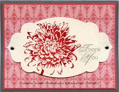Apothecary Accents Framelit Card