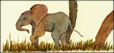 SOLD - Baby elephant original watercolor painting by Juan Bosco ...   Sold