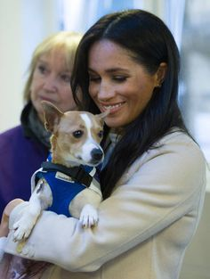 A Jack Russell pup called Minnie that no one wanted is now settling into a new forever-home after Meghan Markle gave her a cuddle for the cameras. Meghan was Meghan Markle, Emporio Armani, Prince Harry And Meghan, Jack Russell Terrier, Duke And Duchess, British Royals, Animal Shelter, Dog Owners, Rescue Dogs