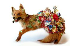 Angela Singer, Hedge Row, 2010, Recycle vintage taxidermy red fox, mixed media, ceramic and bronze flowers