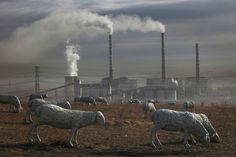 ClickCuriosidades: IMAGENS IMPRESSIONANTES DA POLUIÇÃO NA CHINA