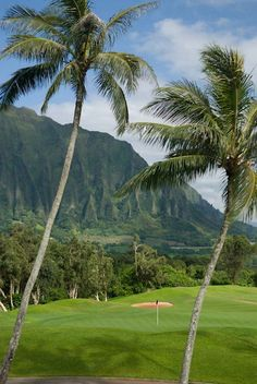 Every day is a good day for golf in Hawaii!