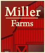 Miller Farms Clinton: pick your own strawberries, fall corn maze. pumpkin patch and doughnuts