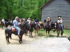One of our many group trail rides Trail Riding, Horse Farms, Kentucky, Horses, Group, Animals, Animales, Animaux, Animal