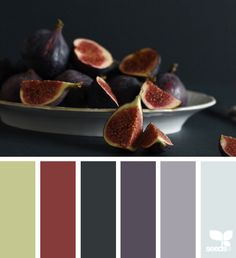 Explore Design Seeds color palettes by collection.