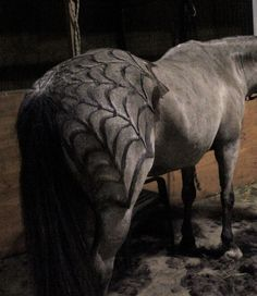 Wow! Horse body clip job for Halloween! I have to try this!