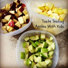 Taste testing apples with kids gives them a chance to learn which types they like best. Learn how to set up your own taste testing station right at home.
