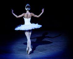 Swan Lake... One of my favorites, beautiful ballerina back muscles!