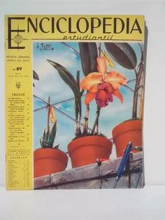 Enciclopedia Estudiantil N° 89 Edit.codex - $ 19,99