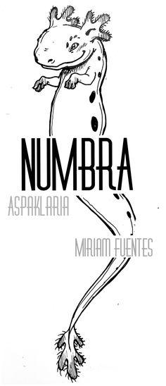 ASPAKLARIA, #character of #Numbra