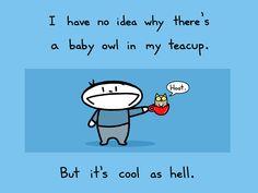 Baby Owl in My Teacup Art Print - sebastien millon