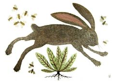 wild hare and honeybees by Golly Bard