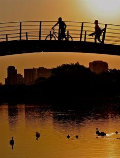 A tarde pinta de dourado o dia que vai invadindo a noite e nossos olhos!
