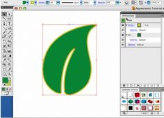 Learn Adobe Illustrator: All the Basics for Beginners