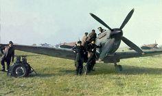 Spitfire PR mk. XI's