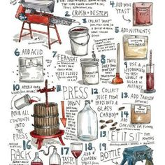 Making Wine..