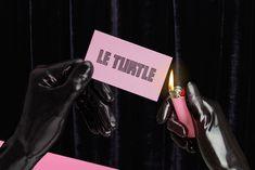 branding-for-le-turtle-new-wave-restaurant-in-new-york-3