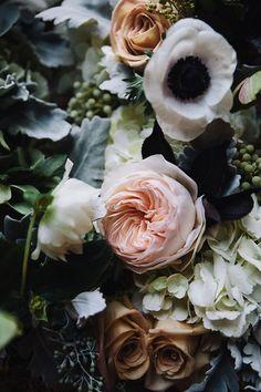 blooms/mixology....flora...spectacular...