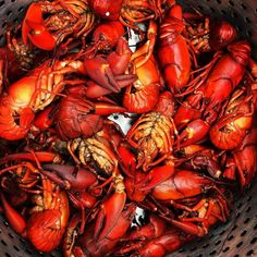 """Last of the 'dads. I have no """"off switch"""" for these lil beauties! Thank you @coastalseafoodsmn Sometimes I cook!! #crawfish #mudbugs #crawdads #crayfish #seafood #bbq #crawfishboil #vegan #paleo #gf #carnivore #spring #wiat #lunch #repast #grilling #cajun #cajunstyle #eater #barbeque #onmydeck #cocktails #pinchthetails #mplsfoodie #crawfishporn #612 #secondbreakfast #cookathome #boilem by bothrops1"""
