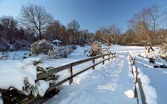 winter in Japanese - Hledat Googlem